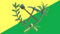 Bandera Seboruco Táchira.PNG