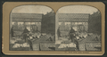 Bank safes being guarded, from Robert N. Dennis collection of stereoscopic views 2.png