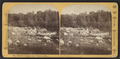 Bartlett's Landing, Upper Saranac Lake, by Styles, A. F. (Adin French), 1832-1910.png