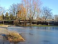 Belvoirpark - Unterer Teil 2015-01-05 15-31-59 (P7800).JPG