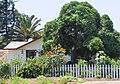 Benicia, CA USA - panoramio (39).jpg