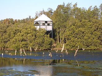 Homebush Street Circuit - Wetlands at Sydney Olympic Park