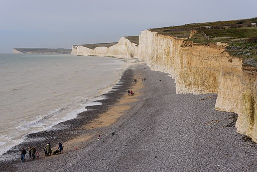 Birling Gap March 2017 04