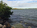 Biscayne Bay from trail.JPG