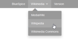 BlueSpice Mediawiki Extension CustomMenu.png