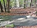 """Boden Grenzfelsen """"Breite Loog"""" im Naturpark und Biosphärenreservat Pfälzerwald - panoramio.jpg"""