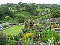 Bonsall - Open Gardens - geograph.org.uk - 850469.jpg