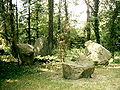 Botanical garden in Poznań3.JPG