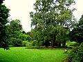 Botanischer Garten der TU Darmstadt - IMG 7045.JPG