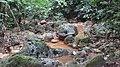 Boulders, Mud Spring, Mount Makiling - panoramio.jpg