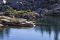 Boulders along Shoreline in the Alpine Lakes Wilderness, Mt Baker Snoqualmie National Forest (32068387396).jpg