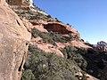 Boynton Canyon Trail, Sedona, Arizona - panoramio (75).jpg