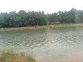 Bramhani nadi Dugala Puri Odisha.jpg