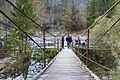 Bridge in Trenta (15454250199).jpg