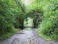 Bridge over Severn Valley Way - geograph.org.uk - 875009.jpg
