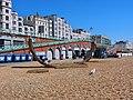 Brighton - panoramio (26).jpg
