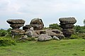 Brimham rocks from Flickr (A) 16.jpg
