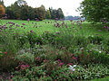 Britzer Garten Rundgang 03.jpg