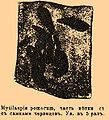 Brockhaus and Efron Encyclopedic Dictionary b76 514-3.jpg