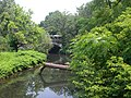 Bronx River northern NYBG jeh.jpg