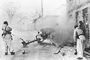 Operation Kugelblitz - Image: Bundesarchiv Bild 183 J16445, Bosnien, Pak im Einatz gegen Partisanen