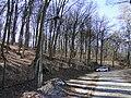Burg Stargard Klüschenberg 2011-03-07 102.JPG
