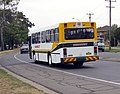 Busabout 3953 MO - PMC bodied Mercedes-Benz O405 (Ex Moorabbin Transit).jpg