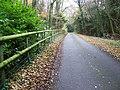 Byway near West Dean - geograph.org.uk - 1053119.jpg