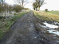 Byway to Winterbourne Bassett - geograph.org.uk - 1189820.jpg