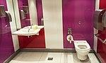 CDG airport toilets 9.jpg