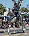 California State Military Reserve 26th Cavalry Support Regiment (34696776111).jpg
