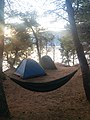 Camping in Komiza on Vis island, Croatia (48694036577).jpg