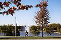 Campus Fall 2013 115 (10291940145).jpg