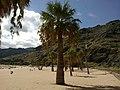 Canaries Tenerife Playa Teresitas - panoramio (2).jpg