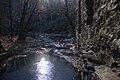 Caney Creek at Sope Creek, Cobb County, GA Dec 2019.jpg