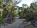 Cape Tribulation - panoramio (1).jpg