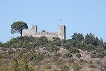 Castelo de Alcanede 7519.jpg