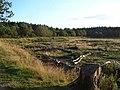 Castle Ring - geograph.org.uk - 3108.jpg