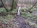 Causeway type footbridge in Lowerstaff Wood - geograph.org.uk - 1620703.jpg