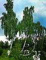 Cegielnia 4 - panoramio.jpg
