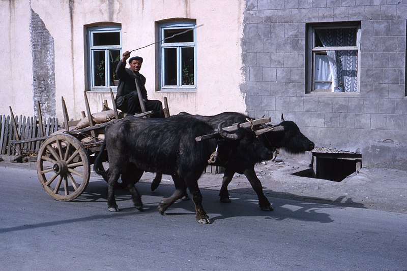 File:Central Asia Hammond Slides 2 09.jpg