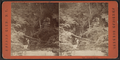 Central Gorge, from Robert N. Dennis collection of stereoscopic views.png