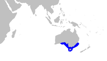 Partial world map with a blue outline along the coast of southern Australia