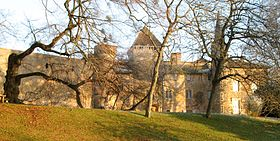 Image illustrative de l'article Château de Saint-Point