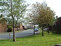 Chapelfield Penistone - geograph.org.uk - 767373.jpg