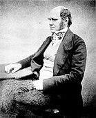 """Ο Κάρολος Δαρβίνος σε ηλικία 51 χρονών, λίγο μετά την δημοσίευση της """"Προέλευσης των ειδών"""""""