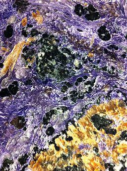 Charoit terra mineraloia