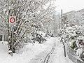 Chemin des vignes during winter - panoramio.jpg