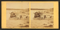 Children in goat cart on beach, from Robert N. Dennis collection of stereoscopic views 10.png