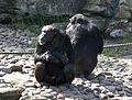 Chimps (3616797897).jpg